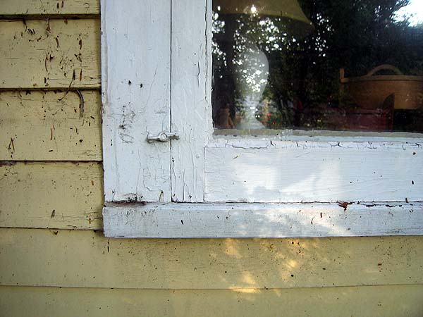 The Silent Paint Remover Featured Project Window